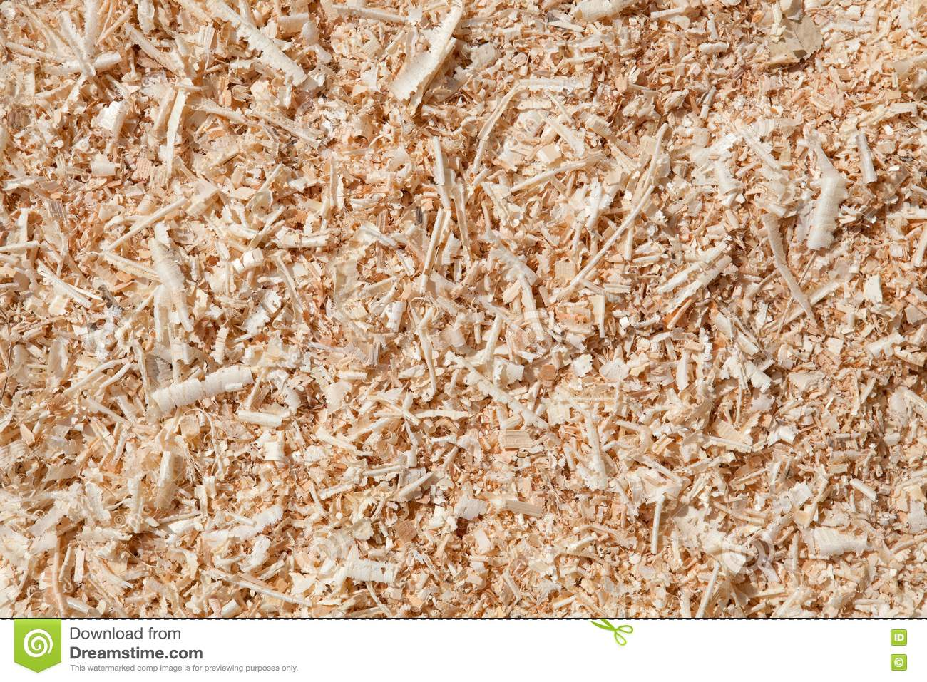 How Different Are Wood Shavings And Sawdust ~ Sawdust royalty free stock images image
