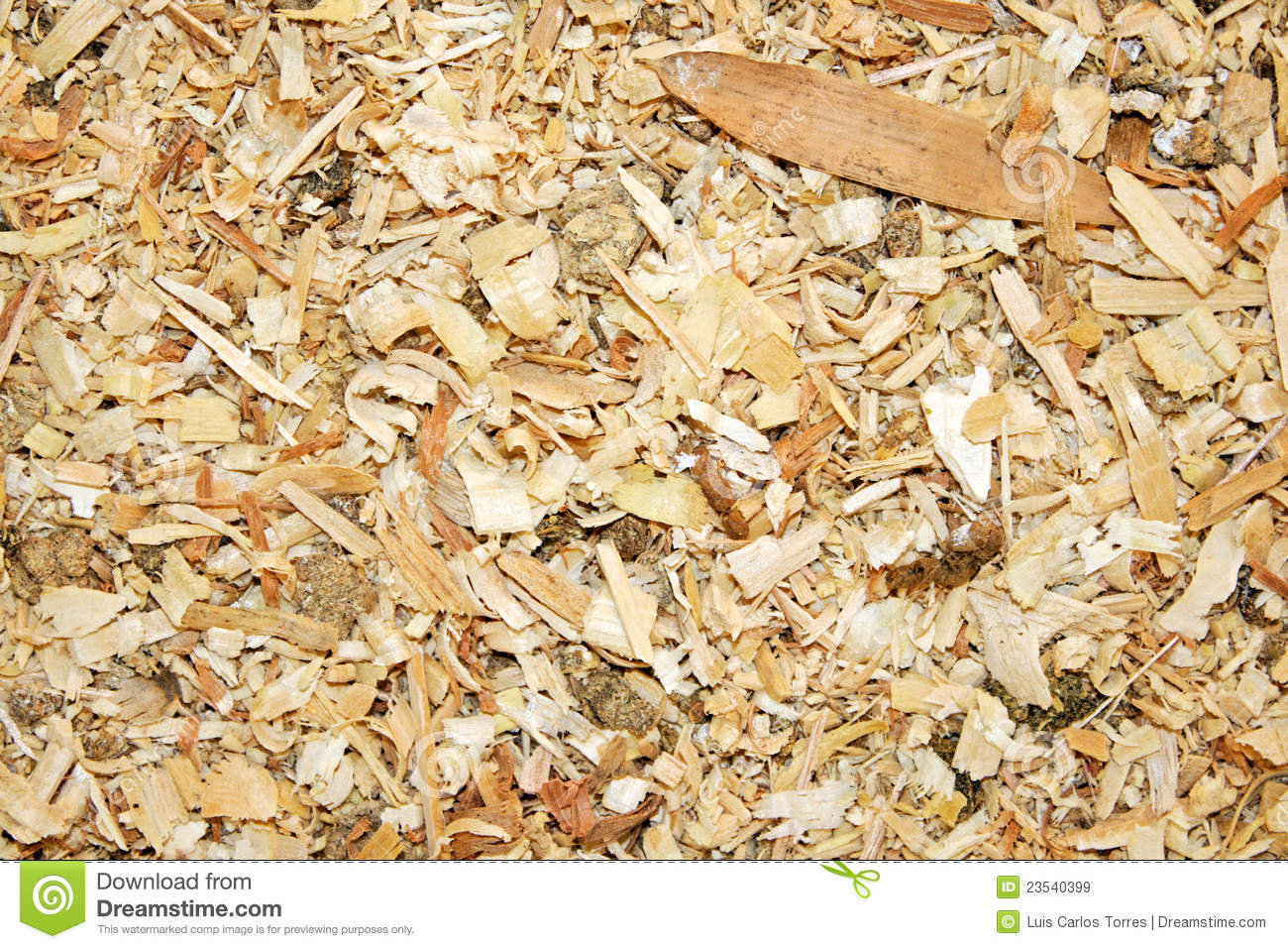 Sawdust animal bedding texture stock image