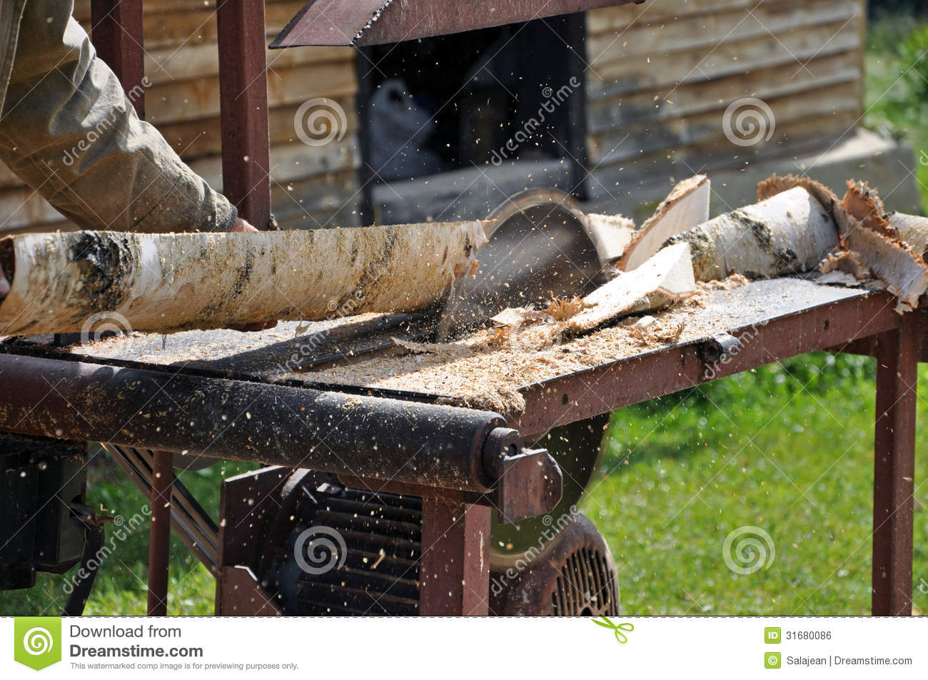 Sawing A Tree With A Circular Saw Royalty Free Stock Image