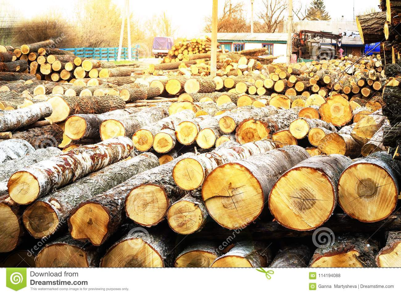 Sawmill, Wood, Timber, Logs, Boards, Raw Materials, Industry