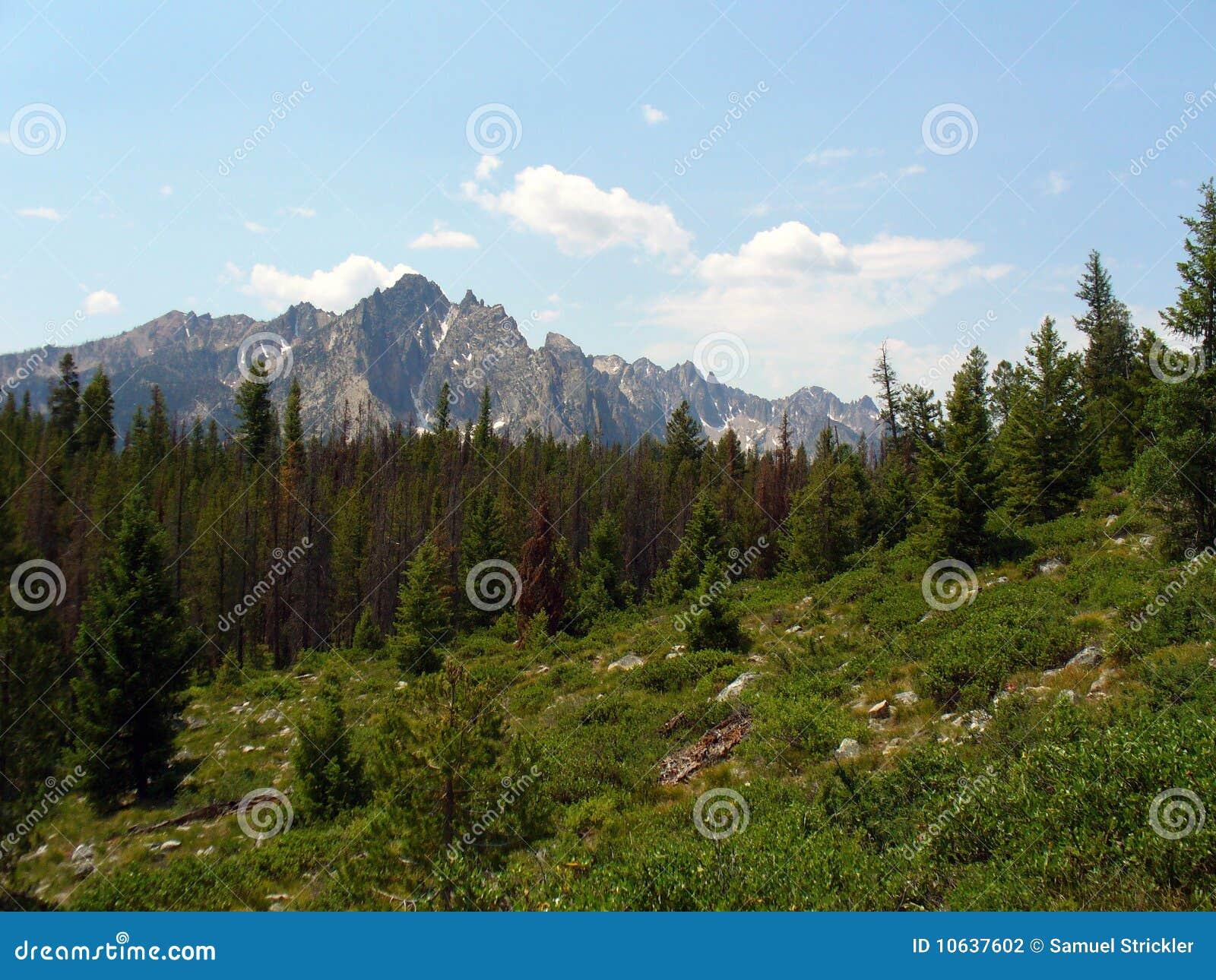 Sawtooth гор Айдахо