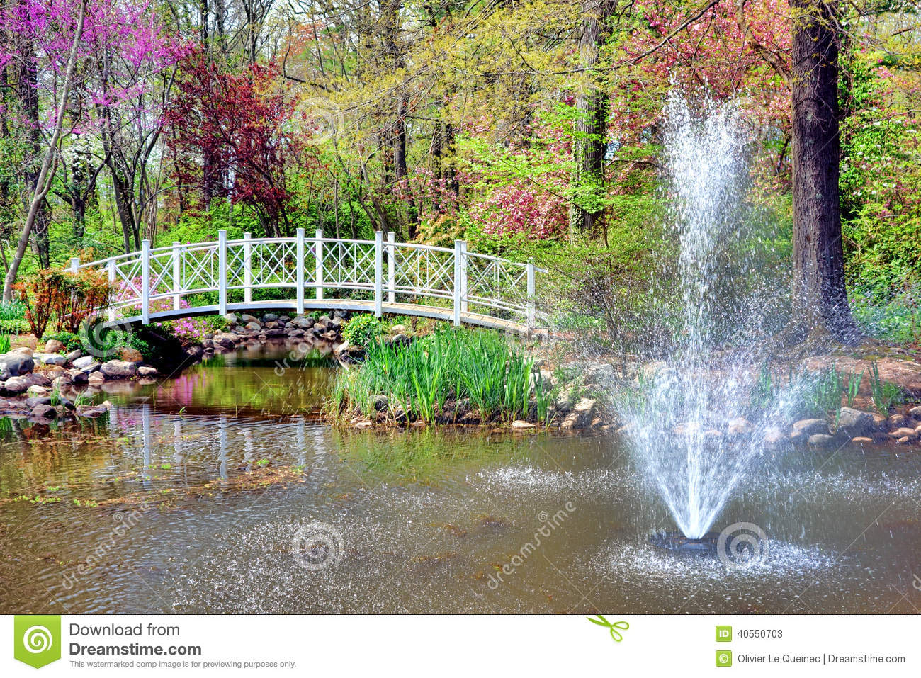 Sayen Park Botanical Garden Fountain And Bridge Stock
