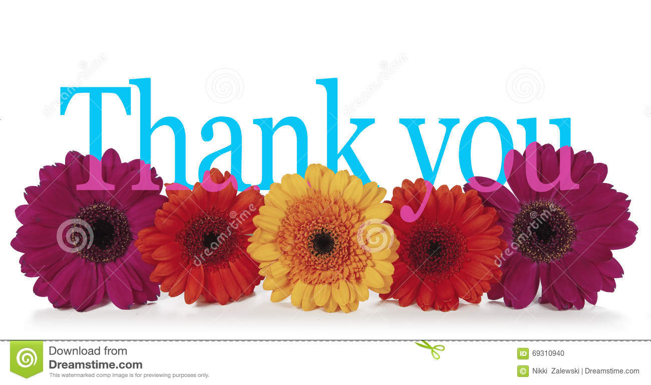 Thank You Flowers Stock Photos - Royalty Free Stock Images