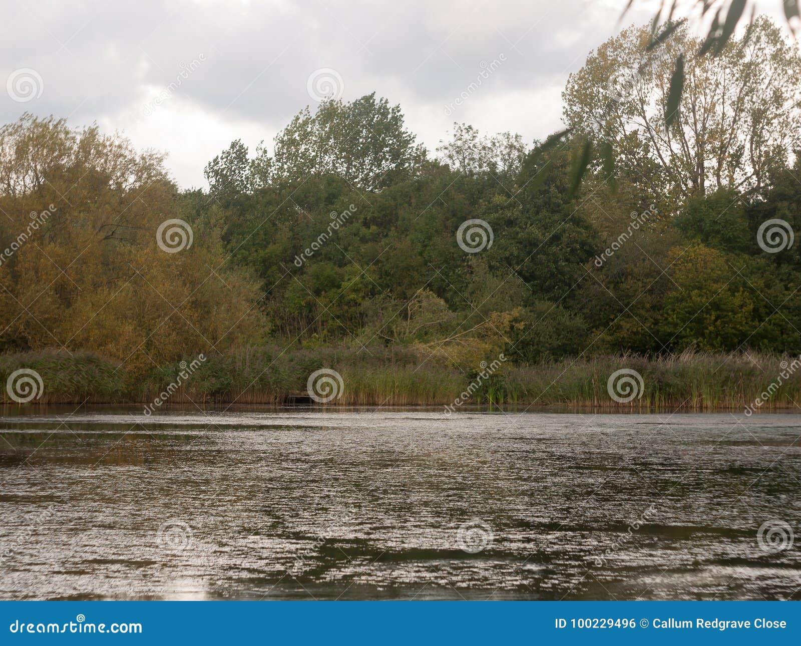 Scène de surface supérieure de lac en dehors de croisement foncé d automne