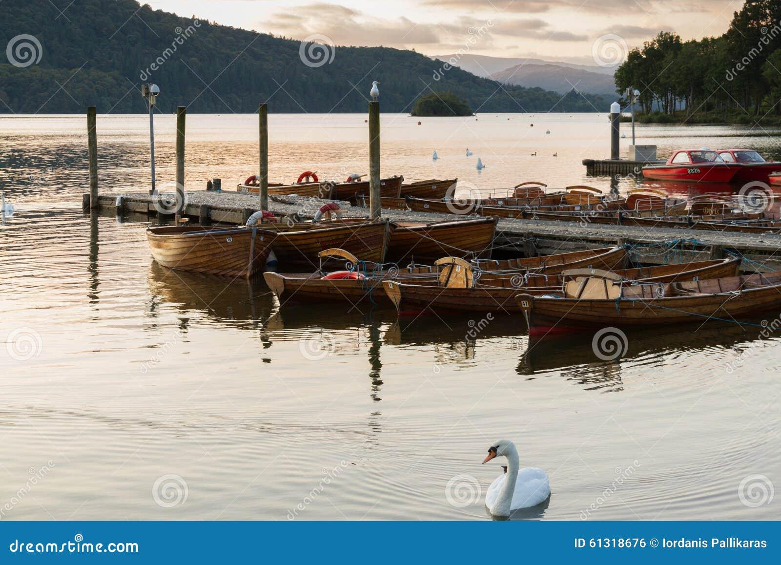 Scène romantique de crépuscule d un beau cygne muet et des bateaux amarrés dans le lac Windermere