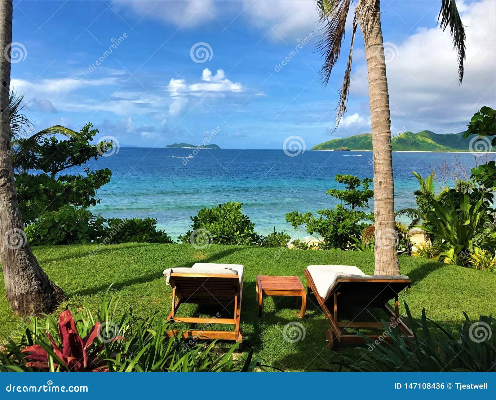 Scène tropicale regardant et détendant