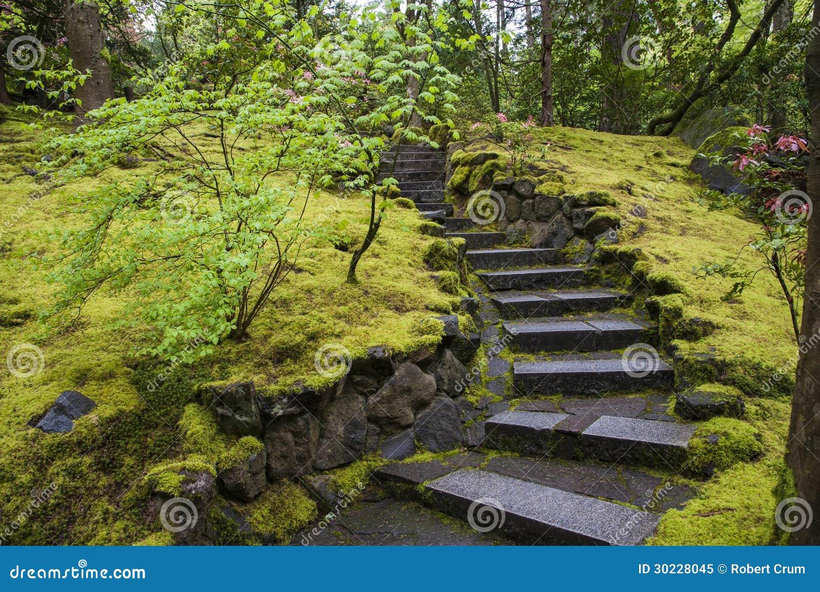 Scala di pietra in un giardino fotografia stock libera da - Scale in giardino ...