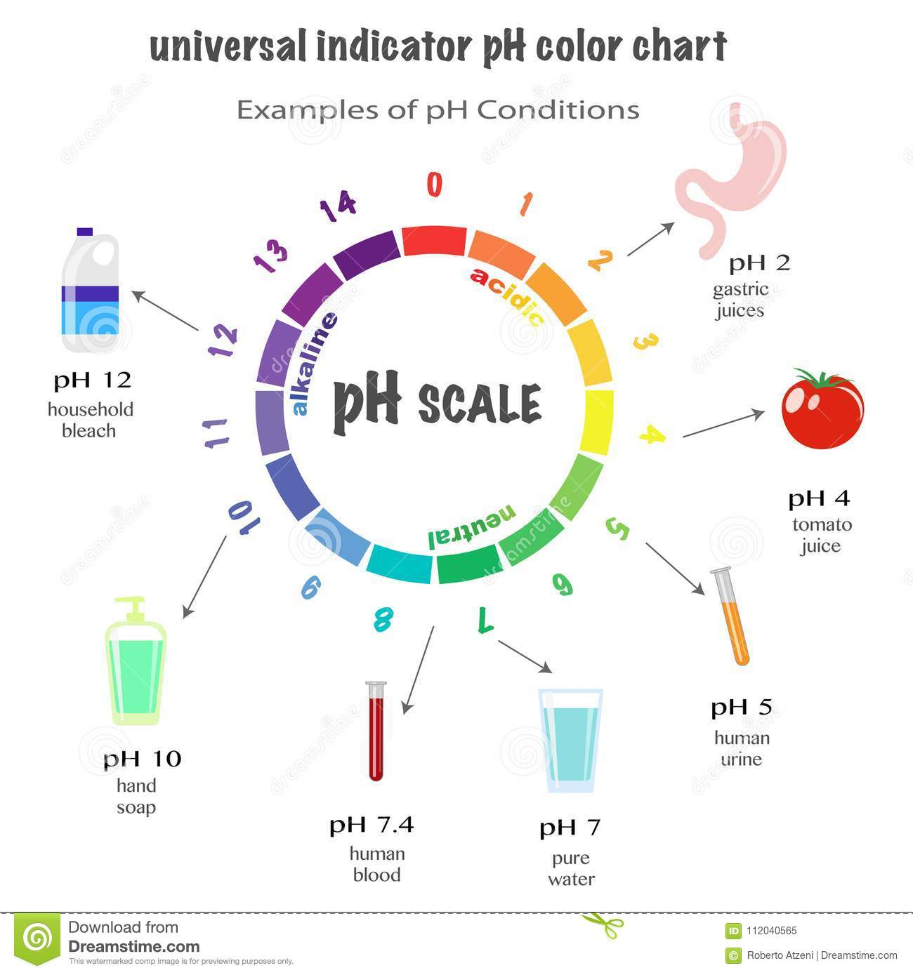 Scale Of Ph Value For Acid And Alkaline Solutions Stock Vector