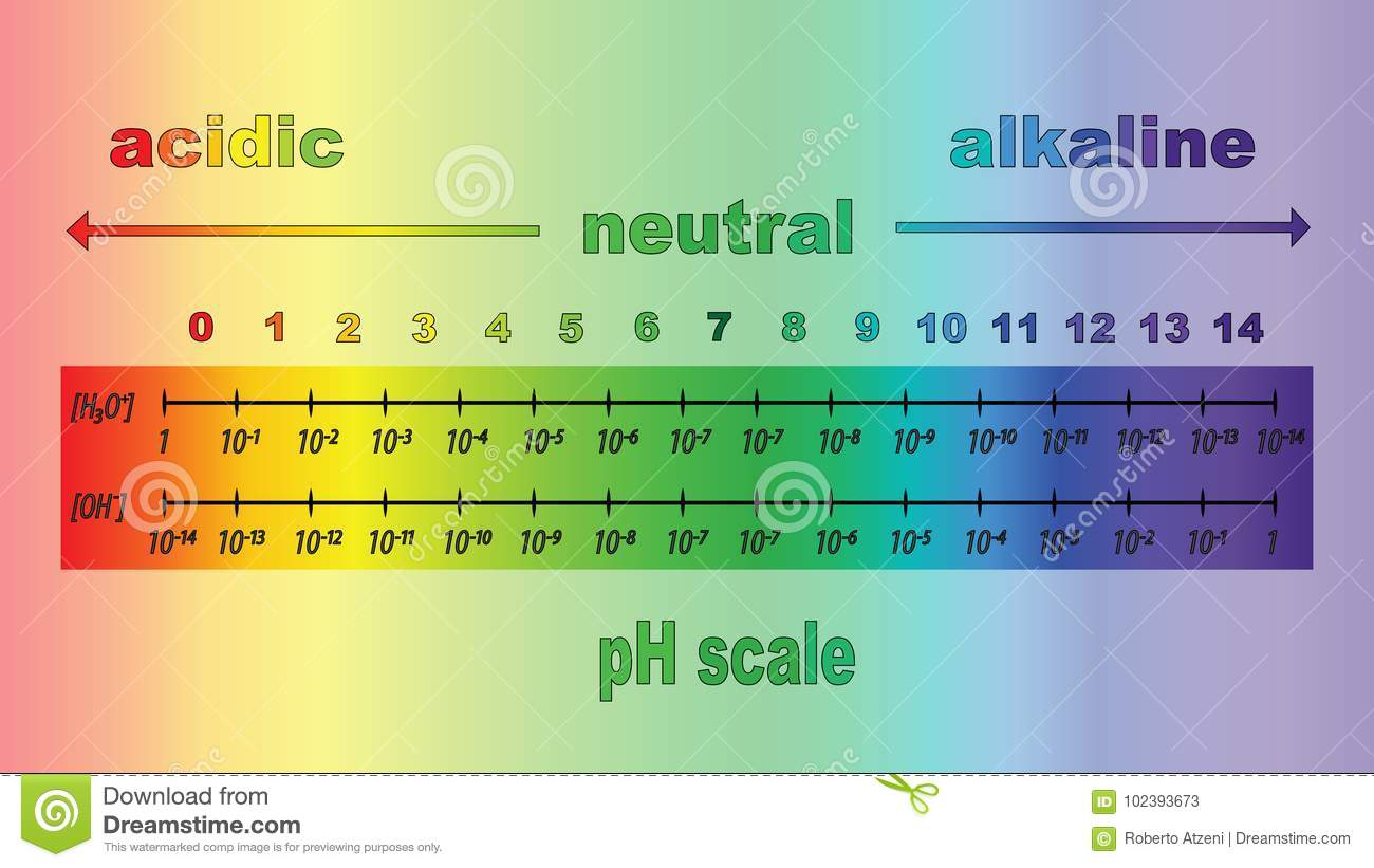 31   Cool Ph Scale Horizontal for Ph Scale Horizontal 1-14  59dqh