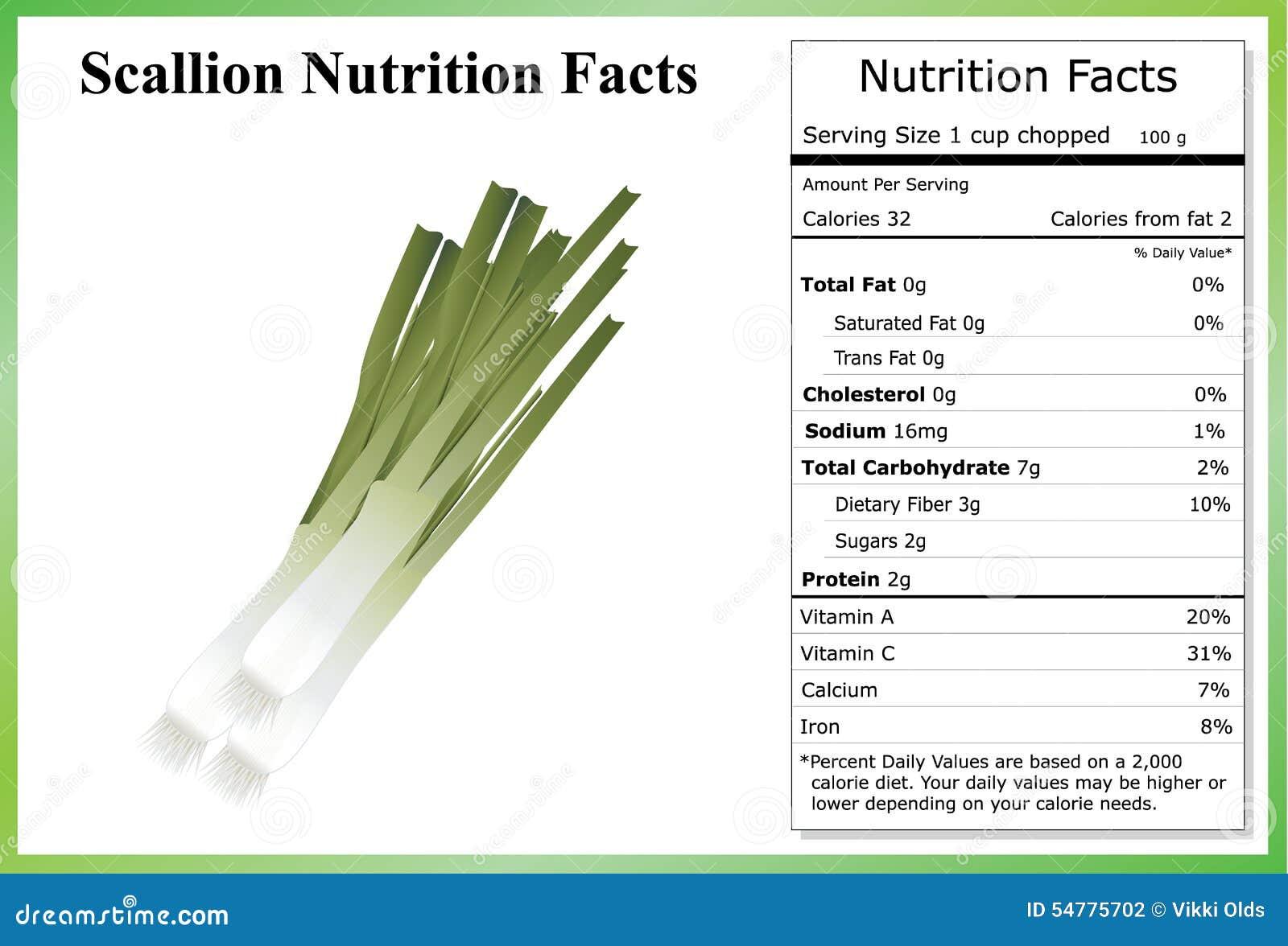 Onion Growing in Kenya: Red Bulb Onion Farming Business Plan