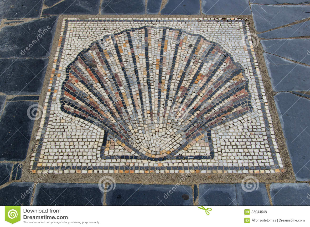 Scallop Shell Symbol In The Ground Saint James Way Stock Photo