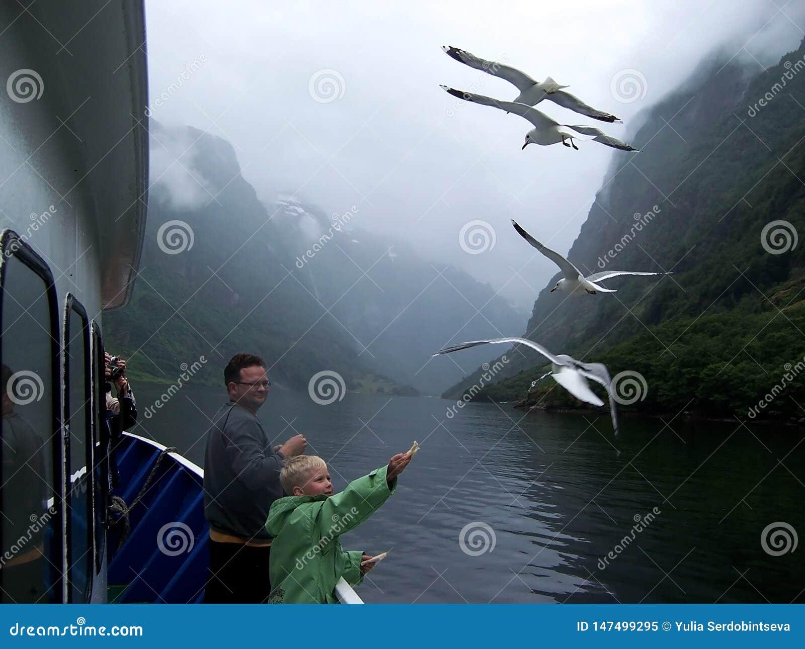 Scandinavian boy feeding seagulls from a cruise ship