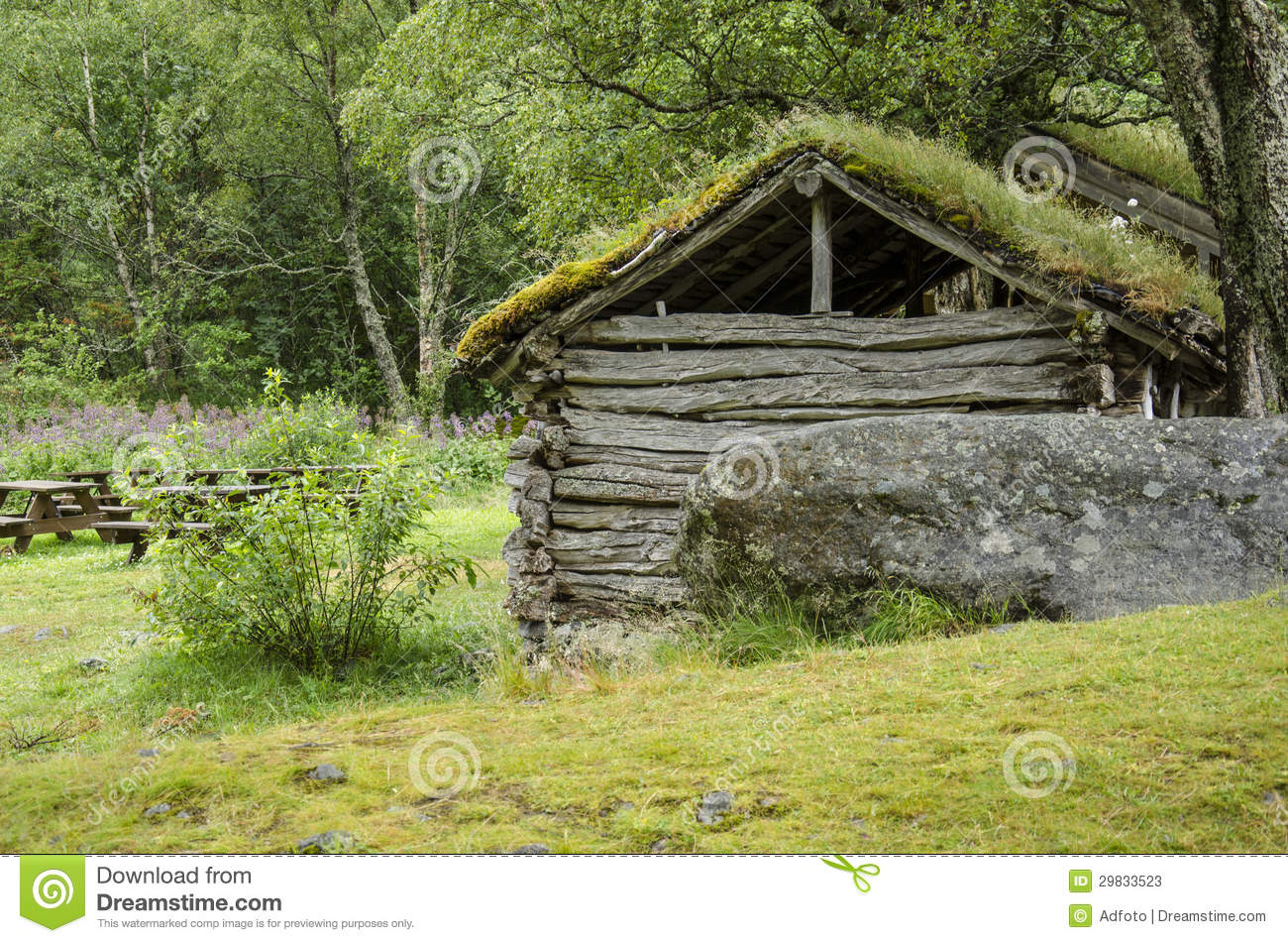 scandinavian traditional house with green roof stock photos