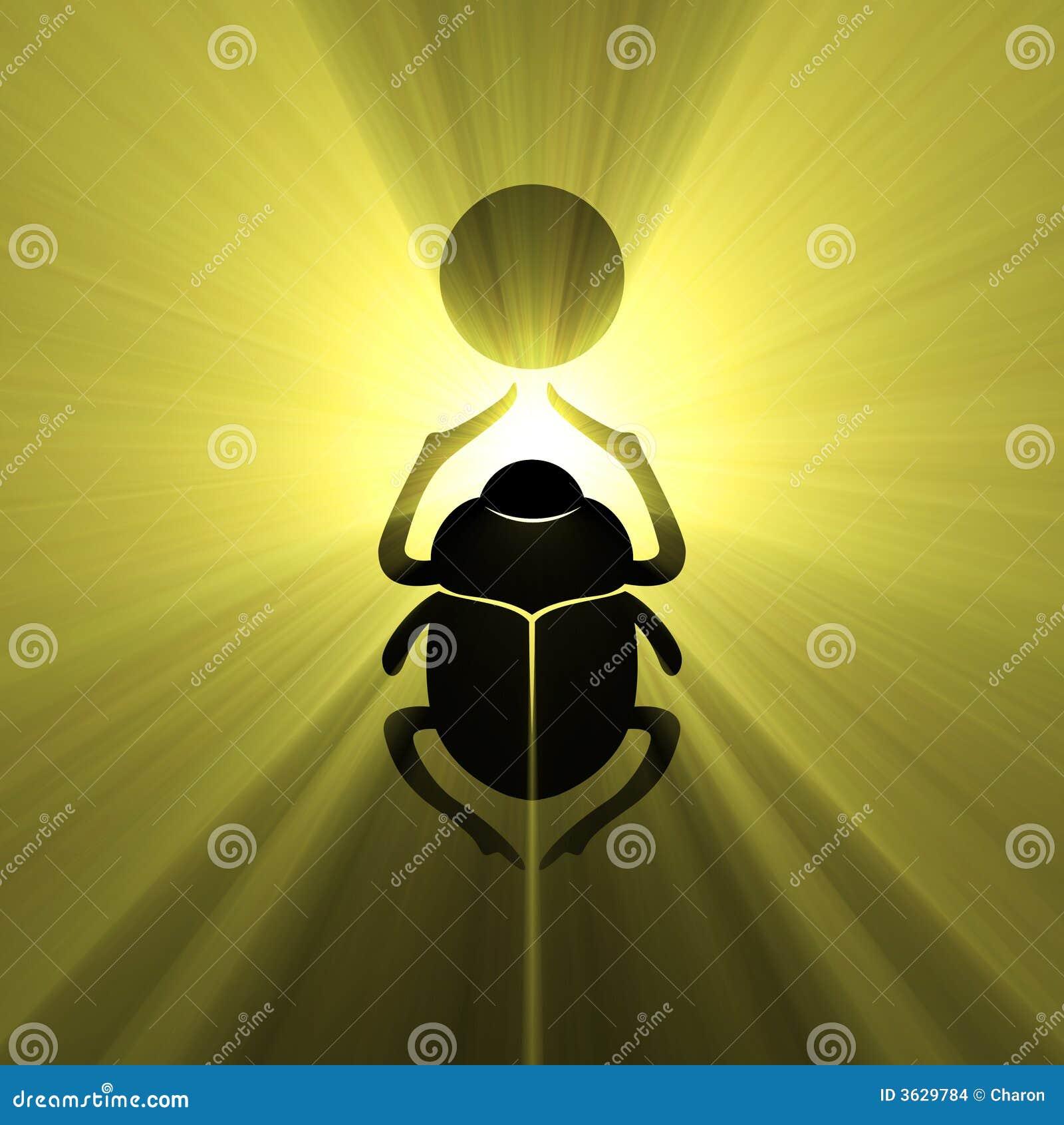 gujarat bsnl co admin profile image qop