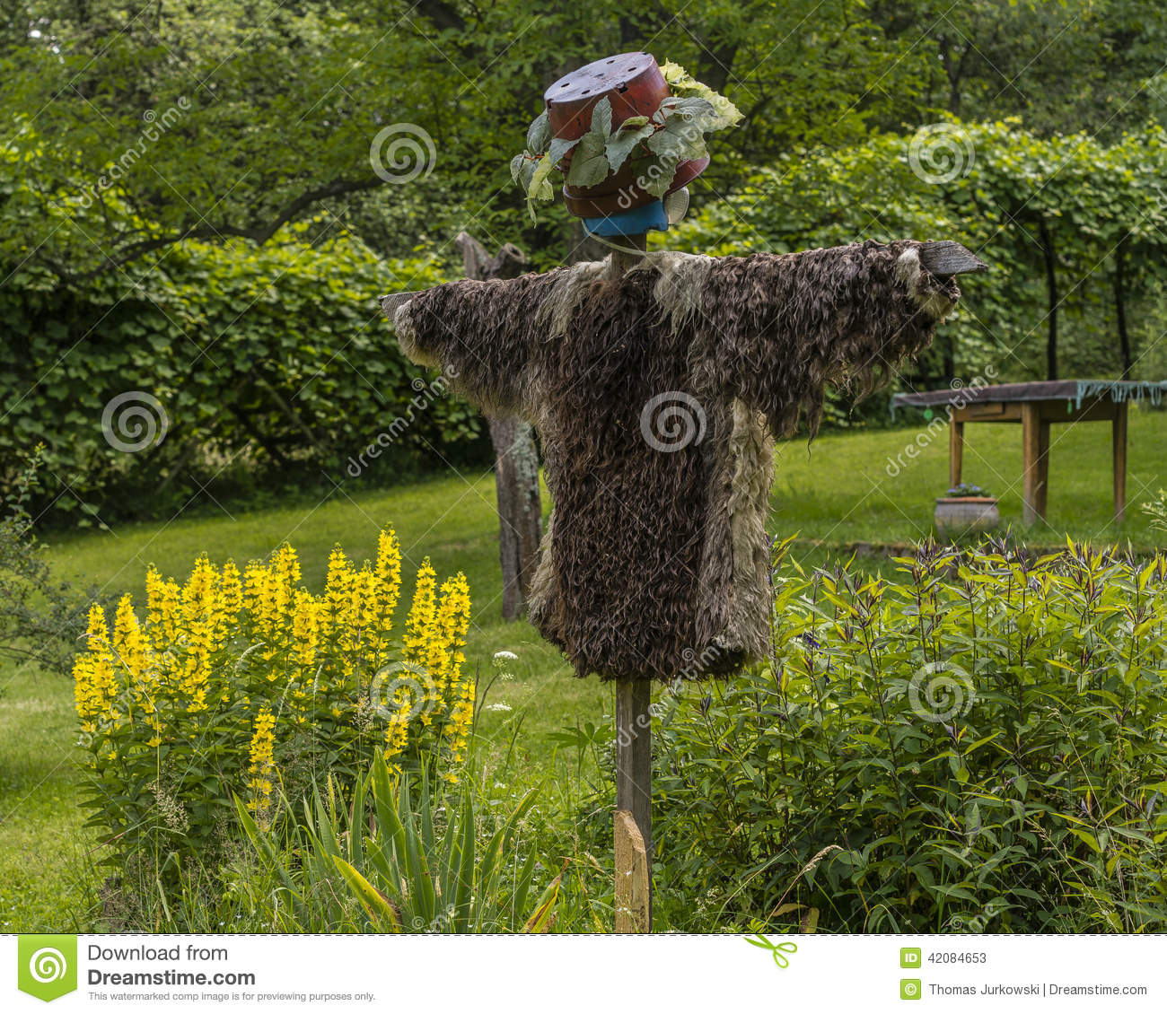 Scarecrow stock photo image 42084653 - Countryside dream gardens ...