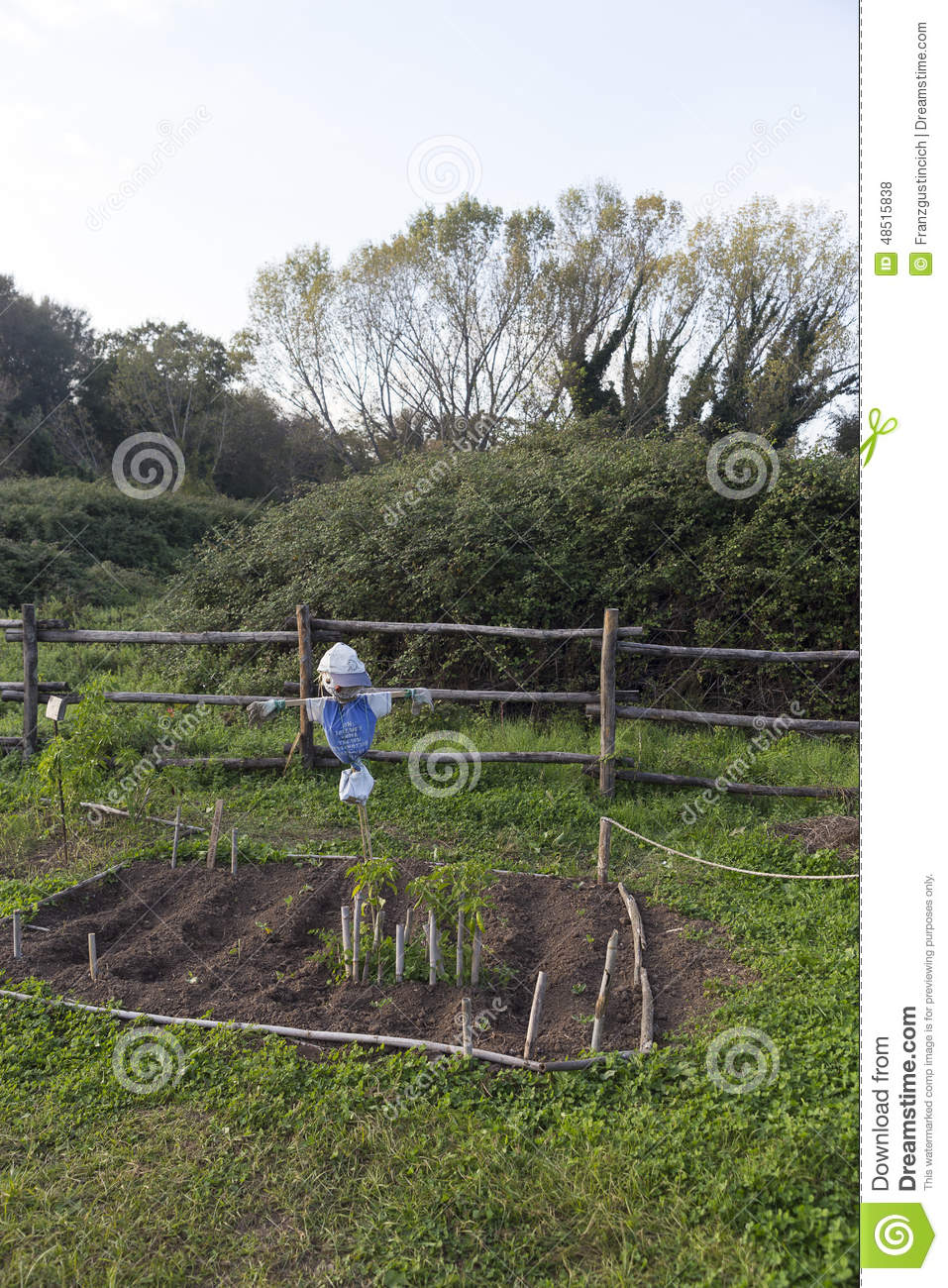 Scarecrow in a vegetable garden stock photo image 48515838 - Countryside dream gardens ...