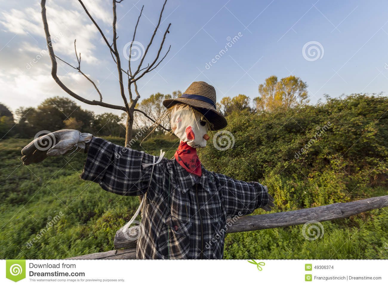 Scarecrow in a vegetable garden stock photo 49306374 - Countryside dream gardens ...