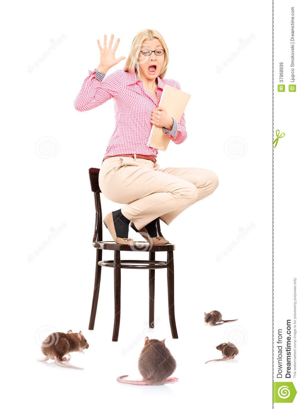 Scared woman standing on chair during a rat invasion