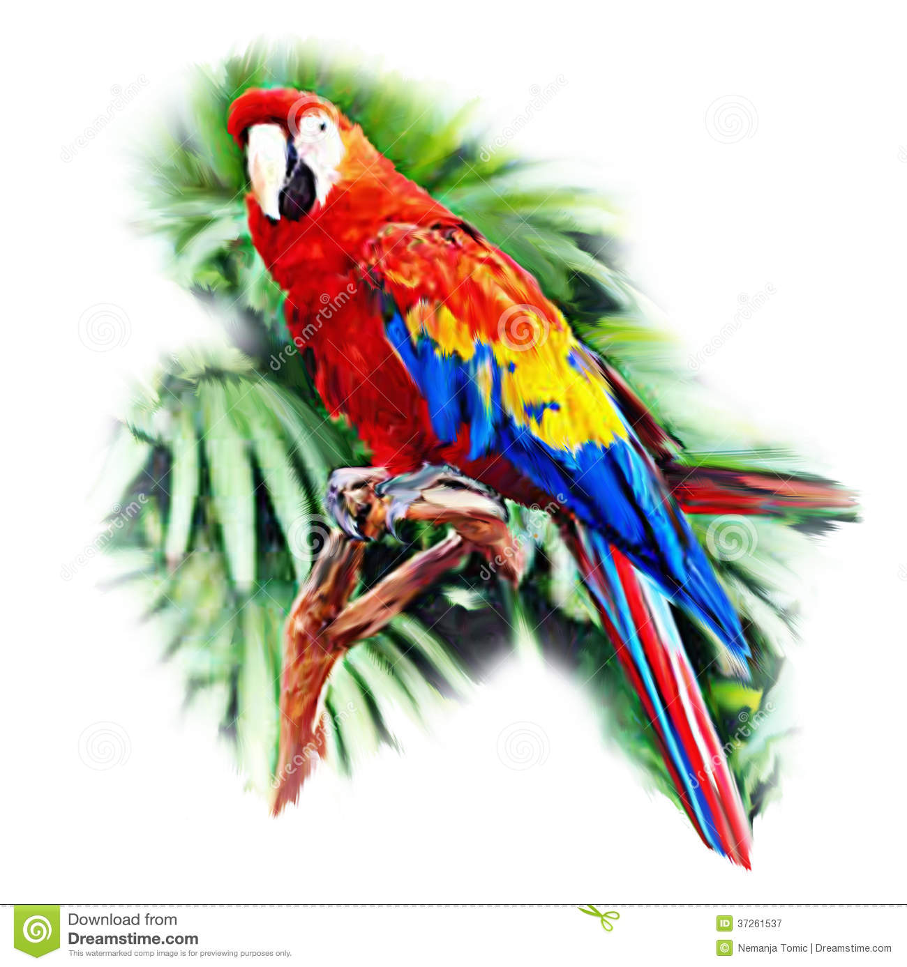 Green Macaw Painting