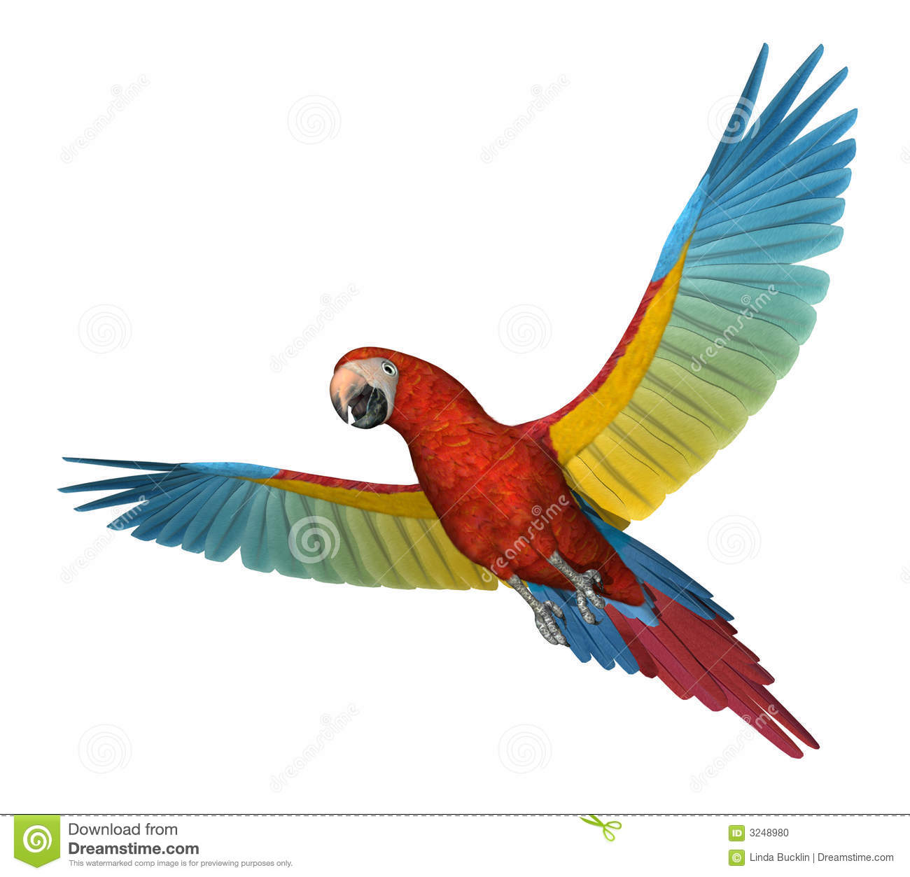 Red Macaw Parrot Flying Scarlet Macaw Flying 2...