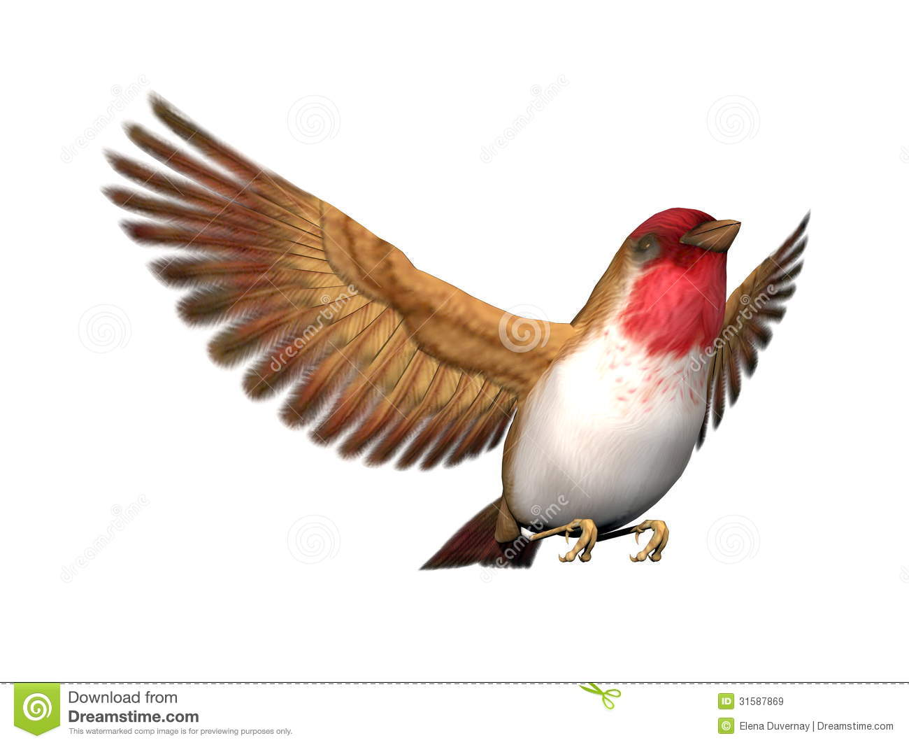 scarlett finch bird 3d render