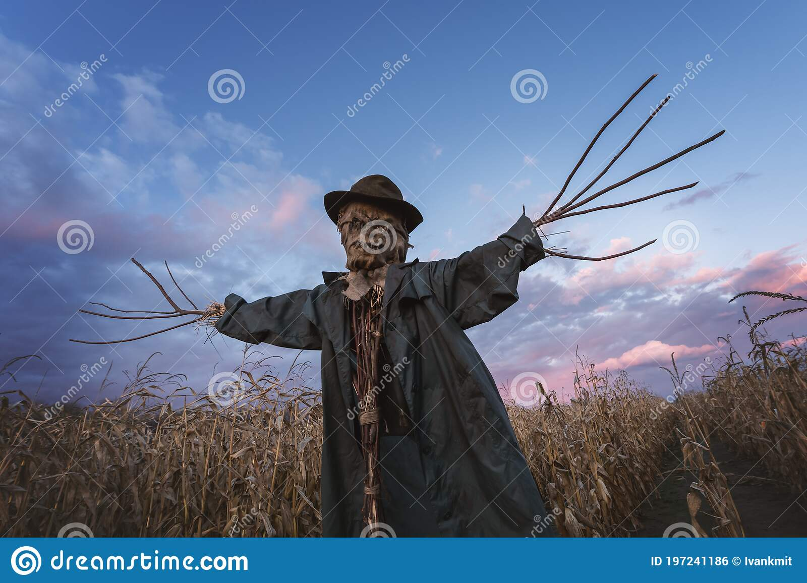 Scary Scarecrow In A Hat Stock Photo Image Of Decoration 197241186