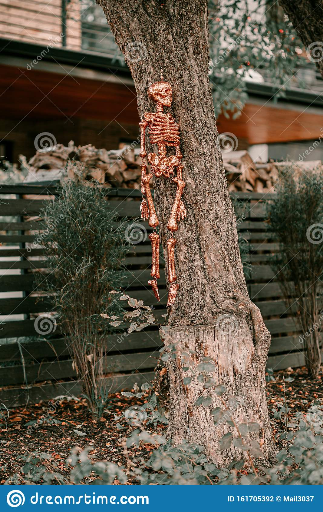 Scary Spooky Halloween House Decorations Halloween Season