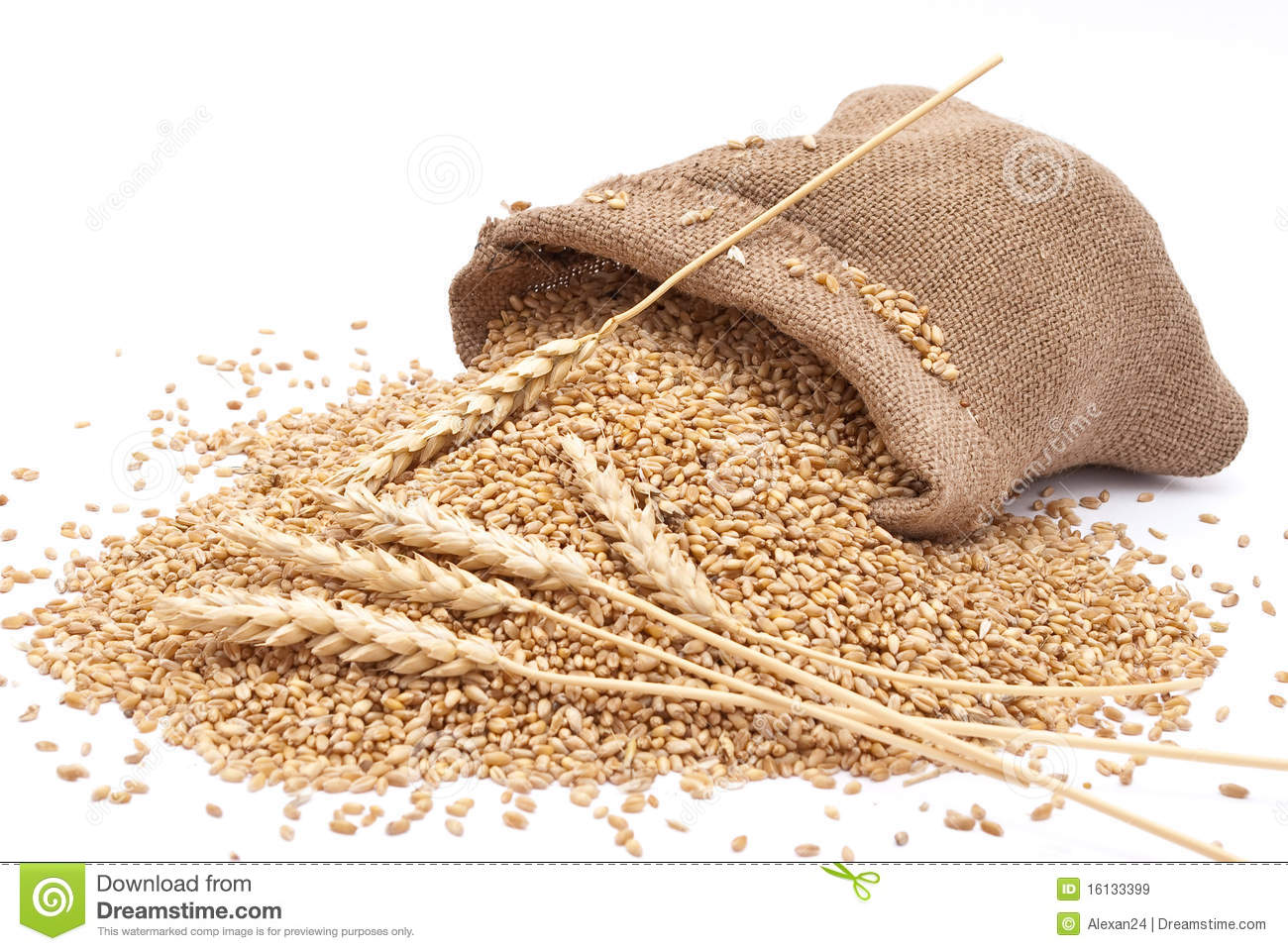 The Scattered Bag With Wheat Stock Image - Image: 16133399