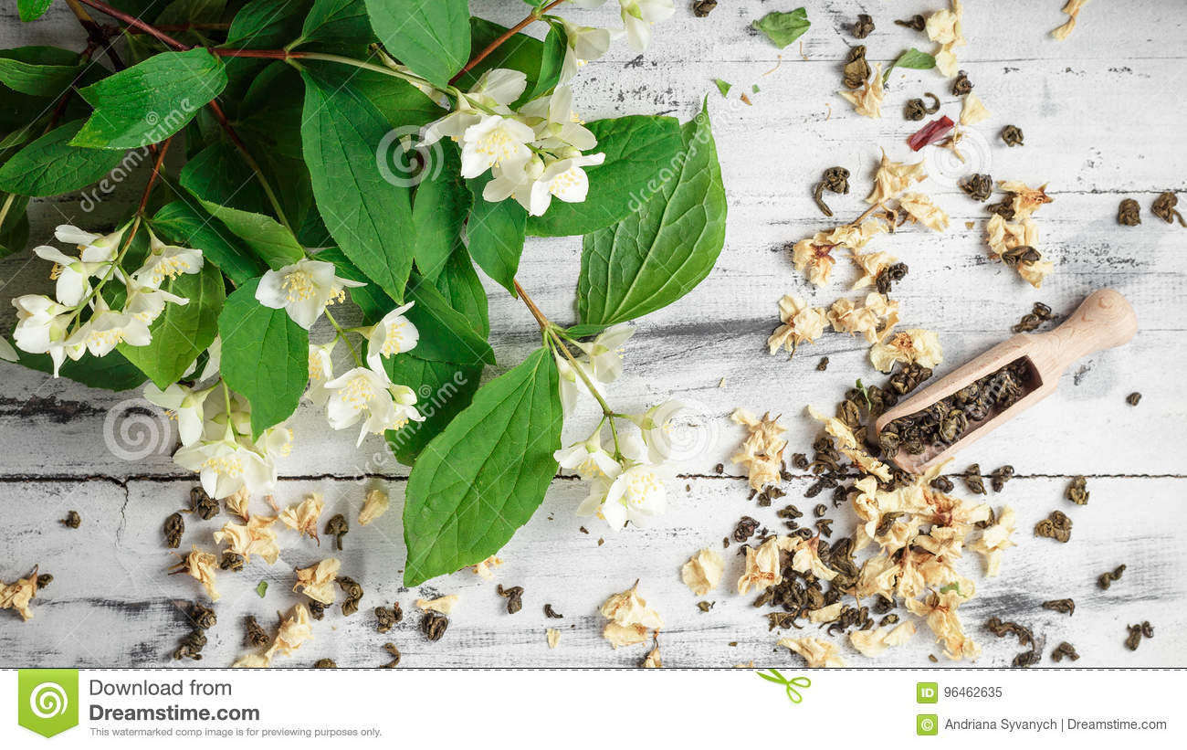 Scattered Green Tea Leaves With Jasmine Flowers Stock Image Image
