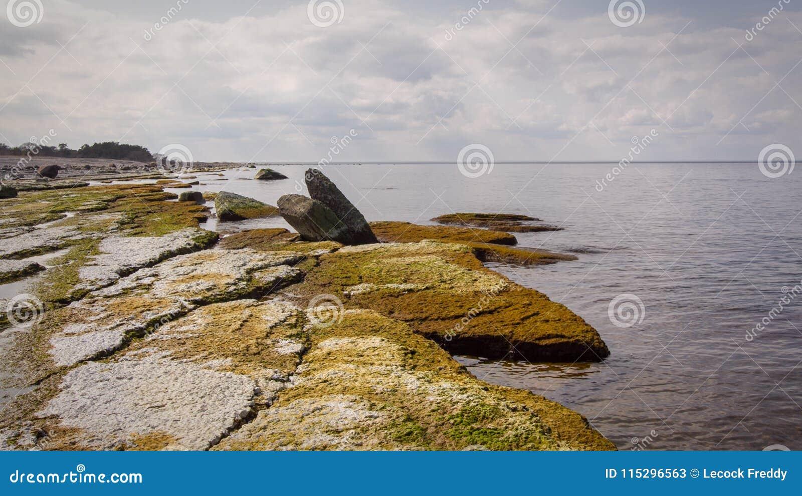Öland costal view