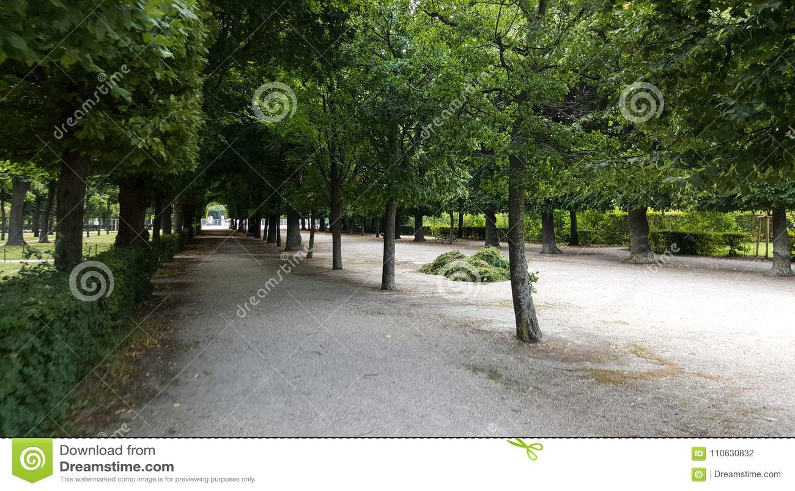 Scena dall interno dei giardini del palazzo di Schönbrunn
