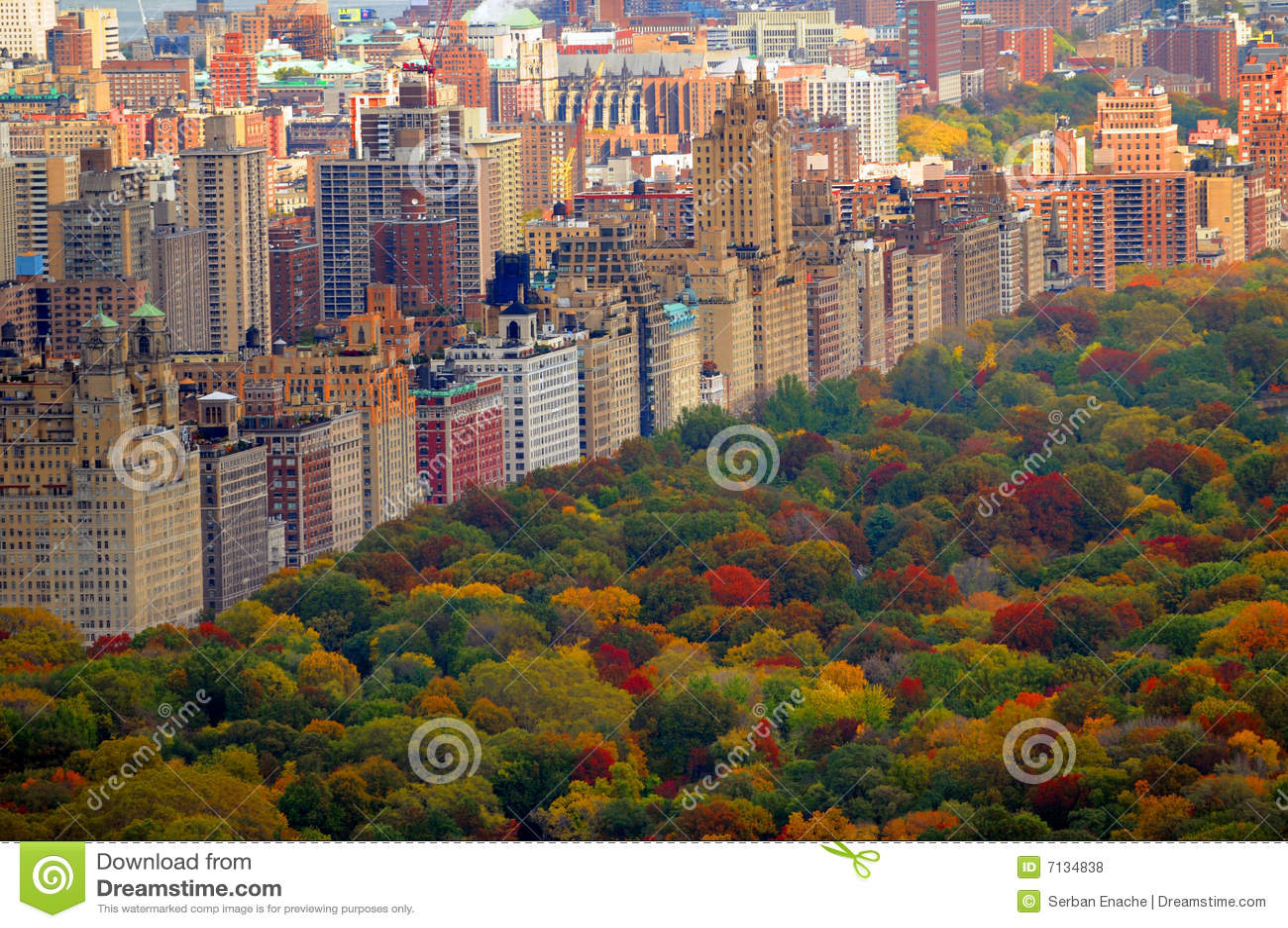 Scena di autunno del Central Park