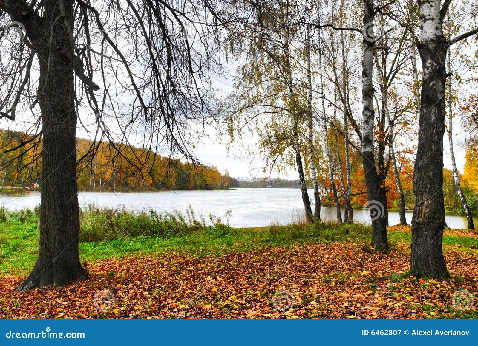 Scena jesienią