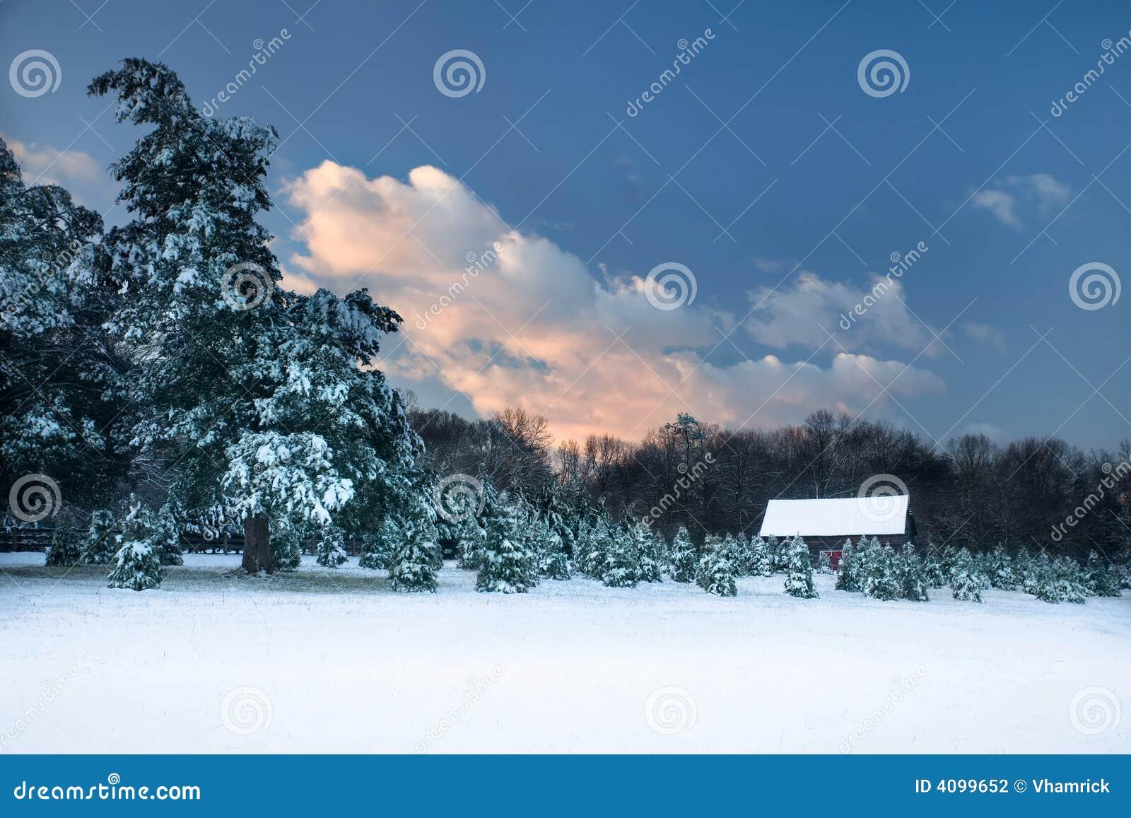 Scena pastorale della neve.