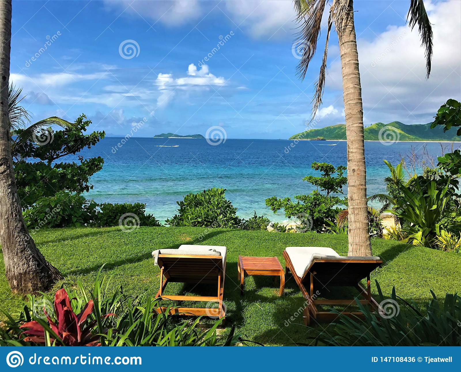 Scena tropicale che guarda fuori e che si rilassa