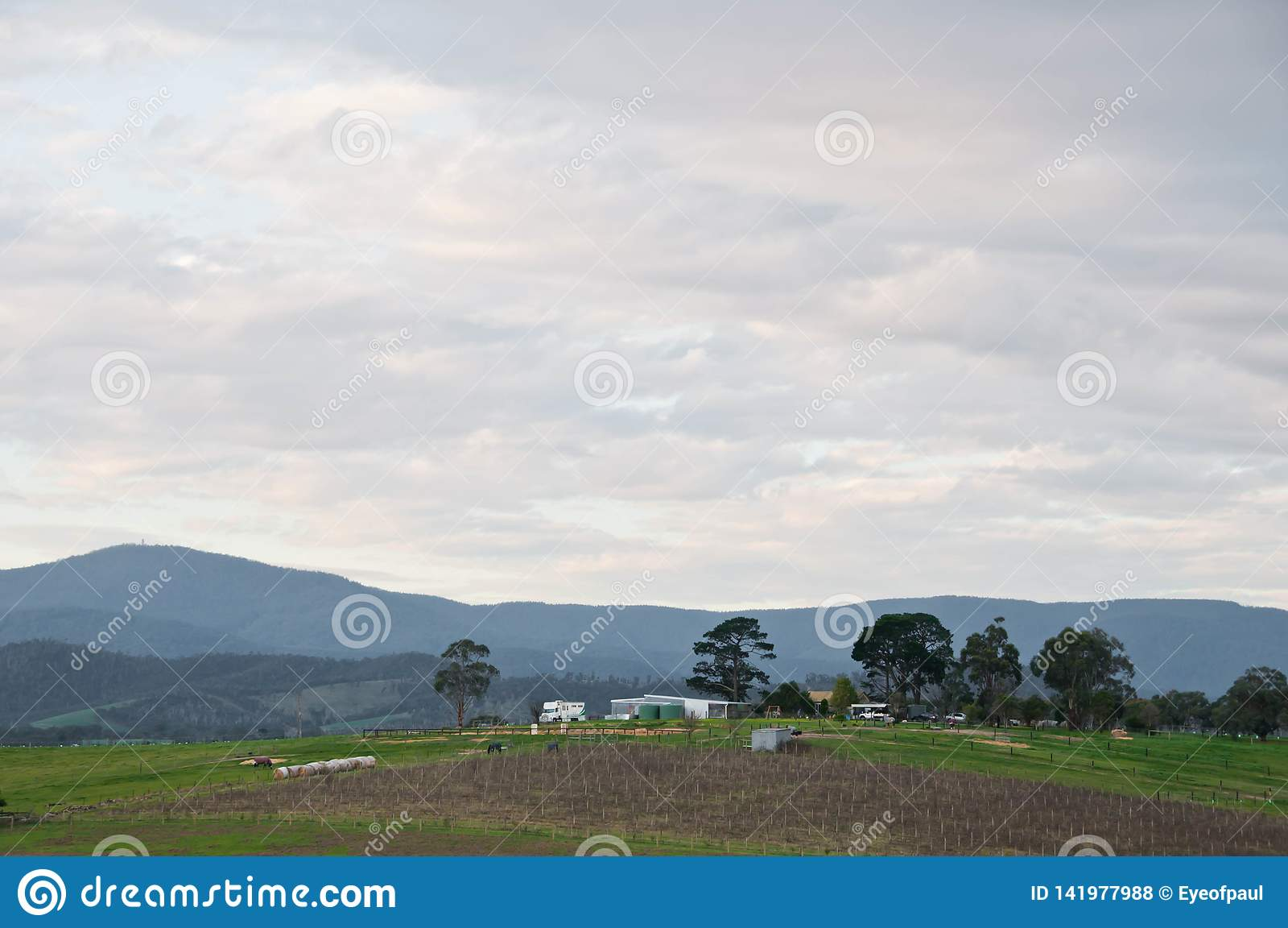 Scena uguagliante pacifica della campagna e del mountainrange della valle di Yarra vicino a Melbourne Australia