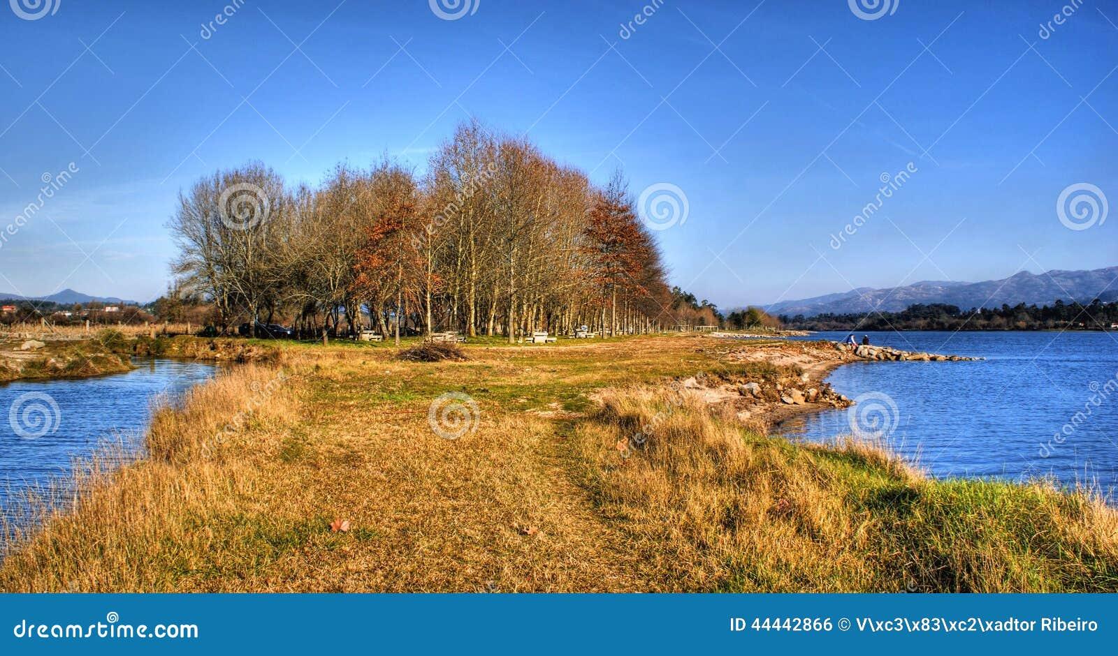 Scenary κοντά στον ποταμό στην αγροτική περιοχή