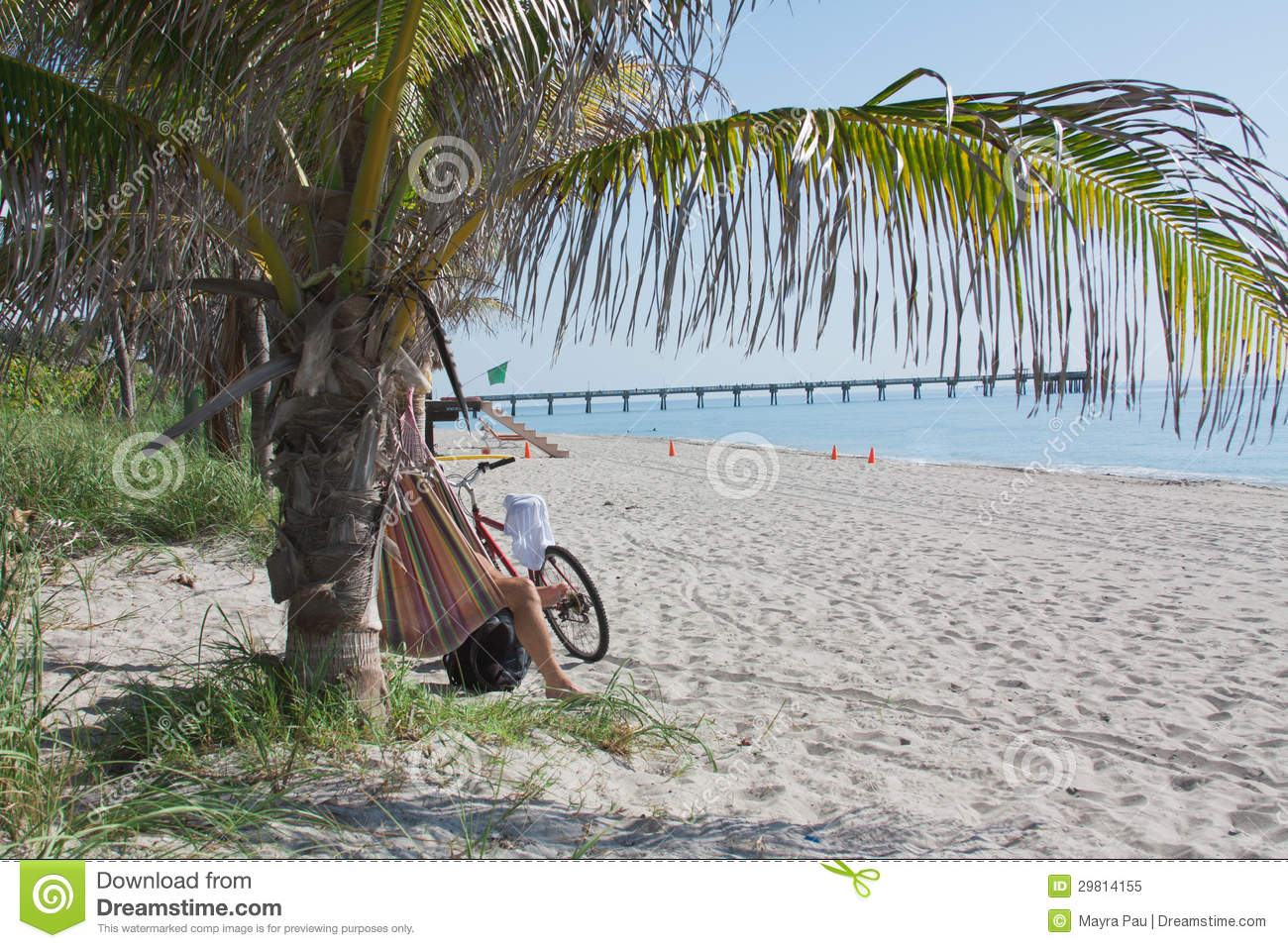Vacation stock image  Image of water, beach, pier, palm - 29814155