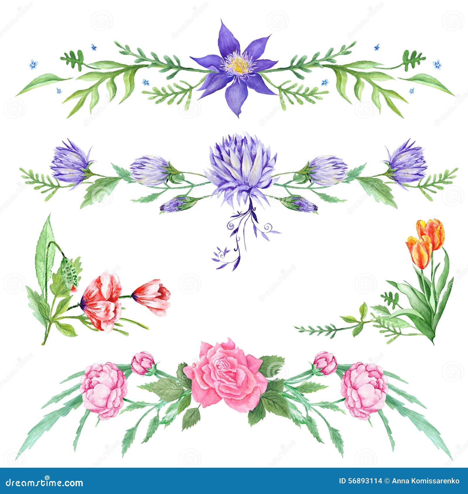 Scenette floreali dell acquerello elegante