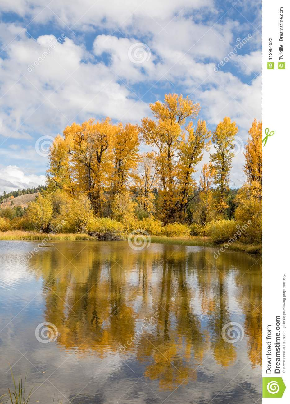 Scenic Autumn Reflection in Wyoming