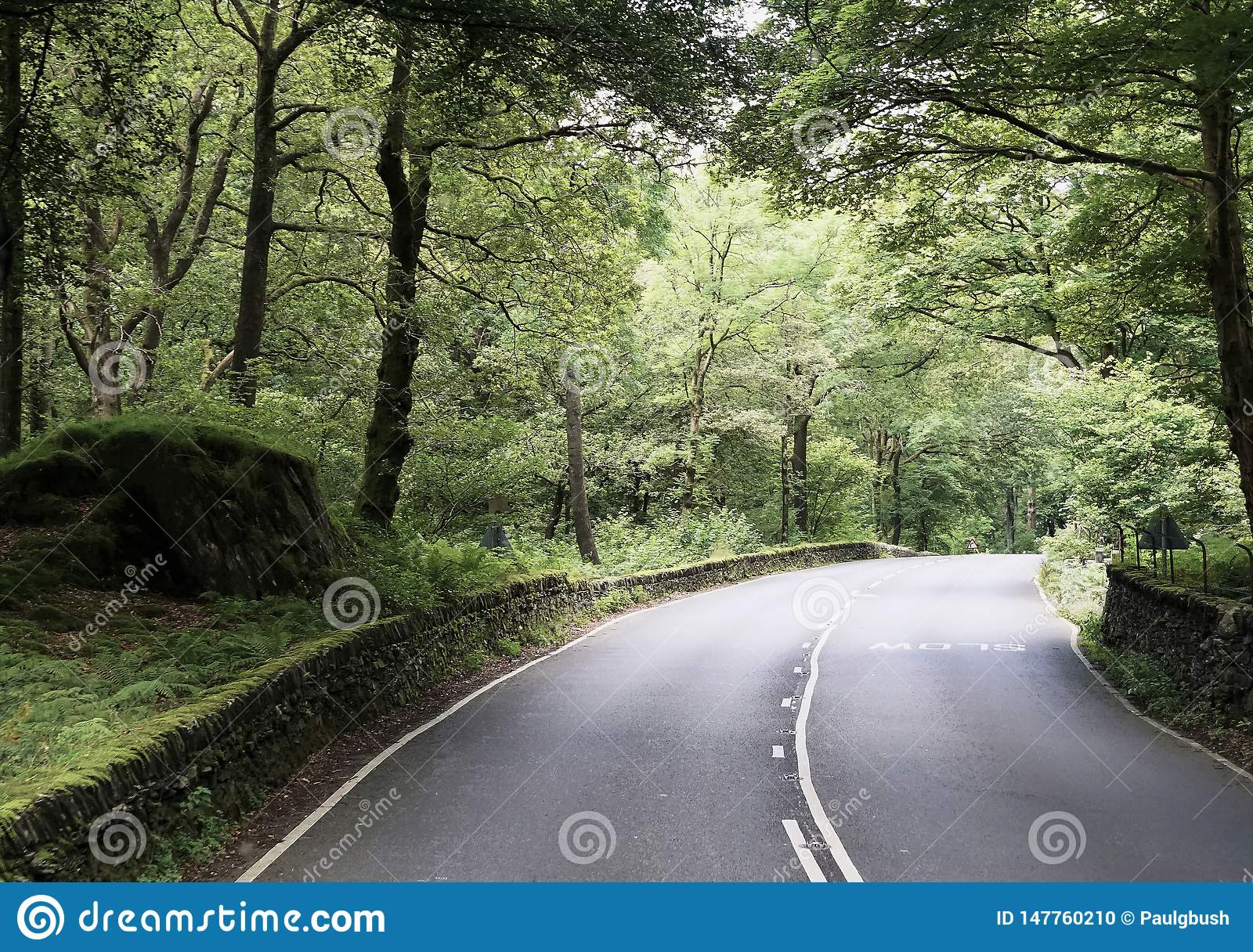 Scenic Country Road in the Northern England Lake District