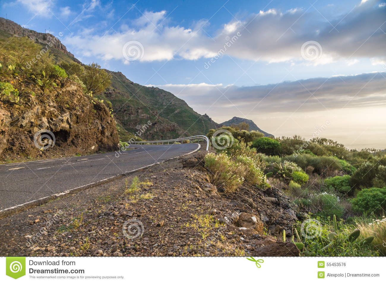 Scenic Curvy Road With Fence On Sunset Tenerife Stock Photo Image