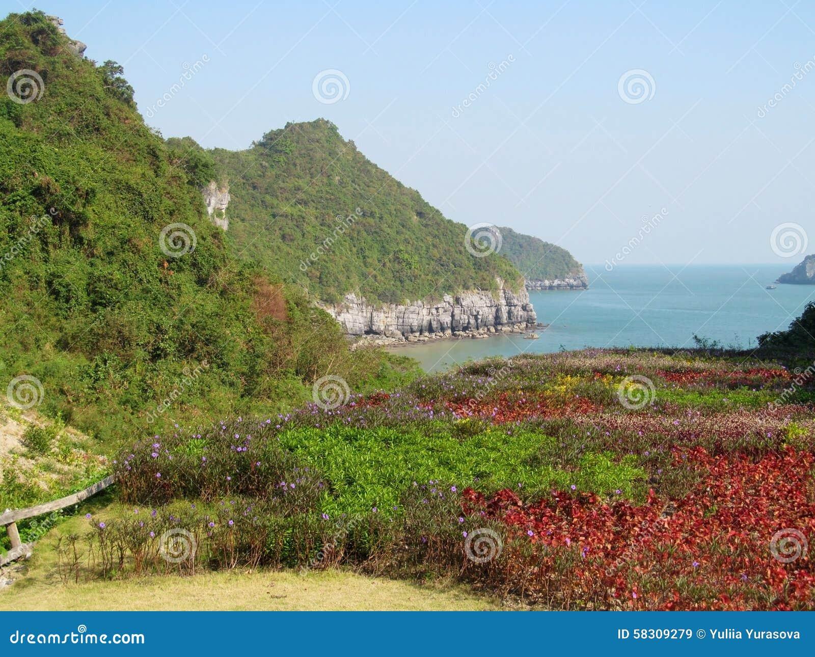Scenic islands in the sea of of Ha Long Bay, Vietnam