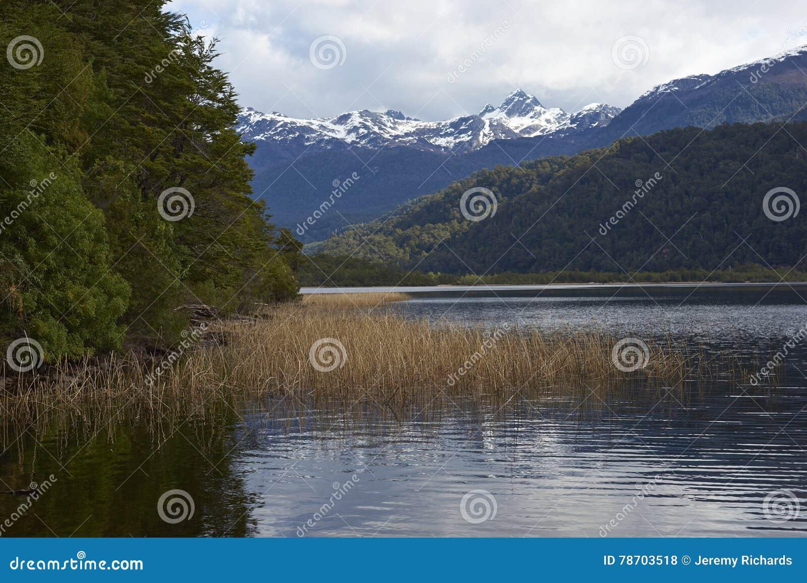 Scenic lake along the Carretera Austral