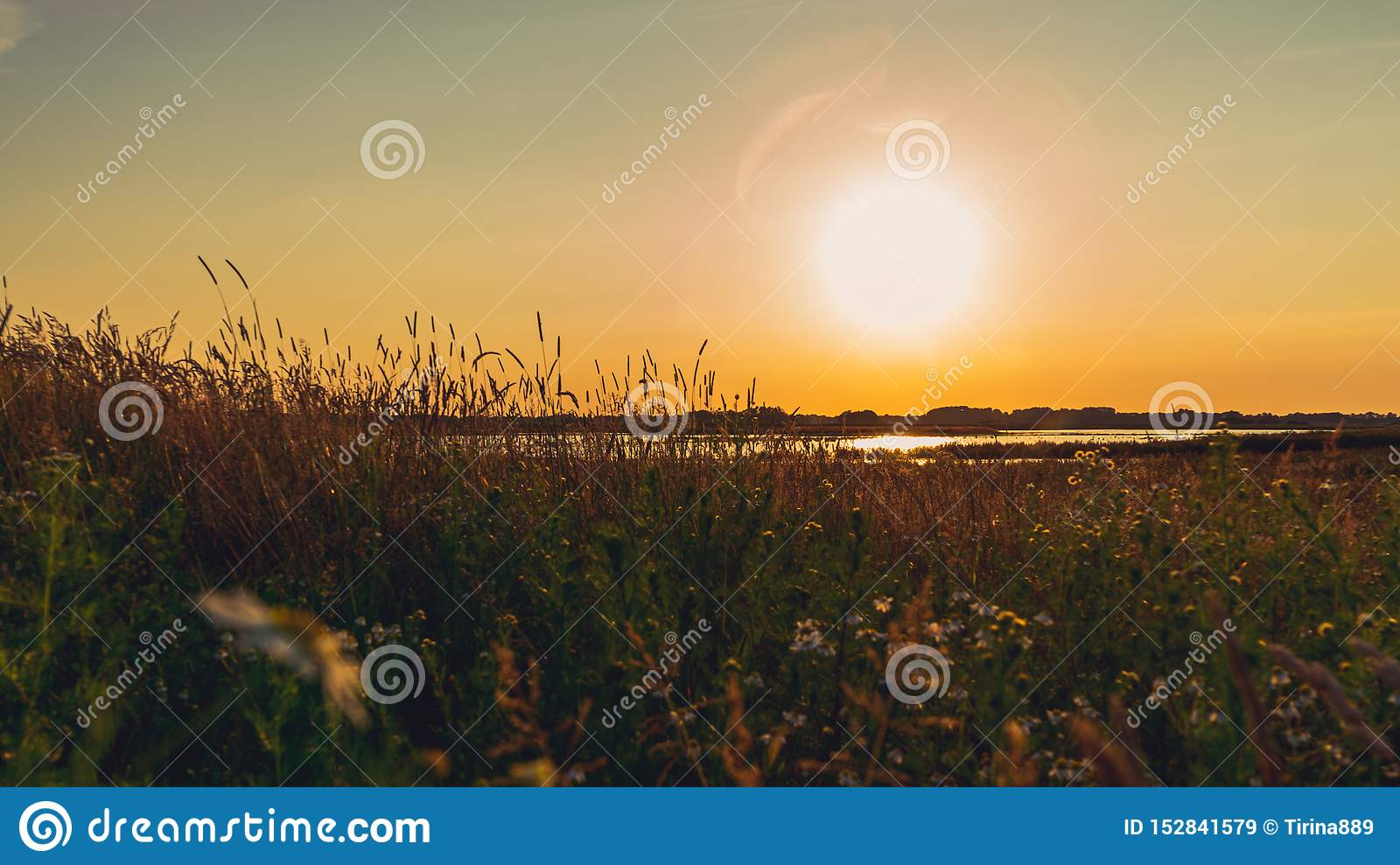 Scenic landscape of field in the evening light, before sunset