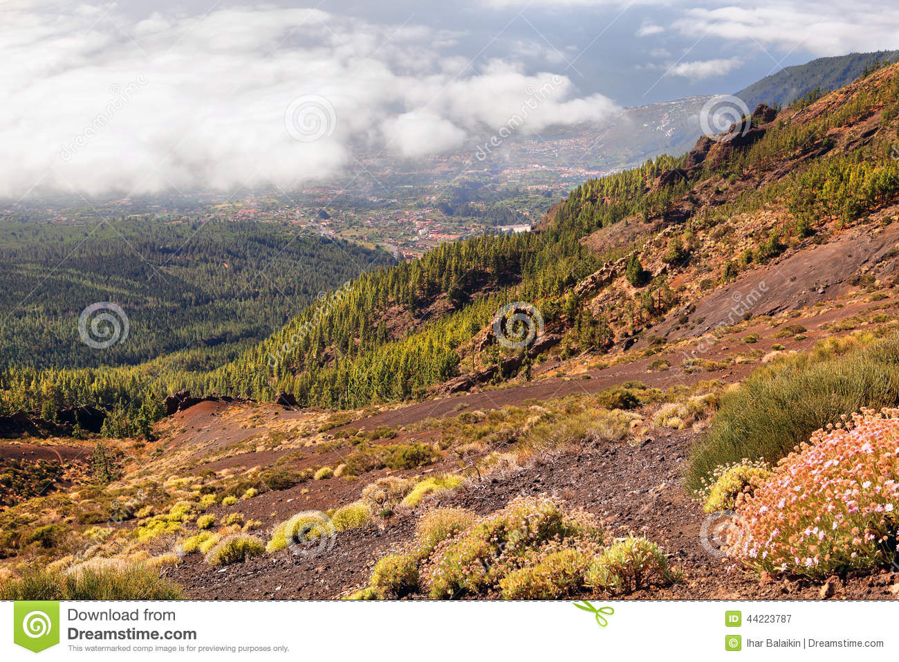 Stock Photo Scenic Landscape Mountain Valley Blue Sky White Clouds Colorful Houses Tenerife Canary Islands Spain Image44223787 likewise Royalty Free Stock Image Green Energy City Concept Image28446406 together with 128 moreover Royalty Free Stock Photos Afghanistan Village Image19380898 furthermore Stock Photo Arab Village Old Mud Huts Fujairah Uae Traditional Consisting Houses Roofs Made Bamboo Rocky Courtyard Front Image41206188. on design of houses plan