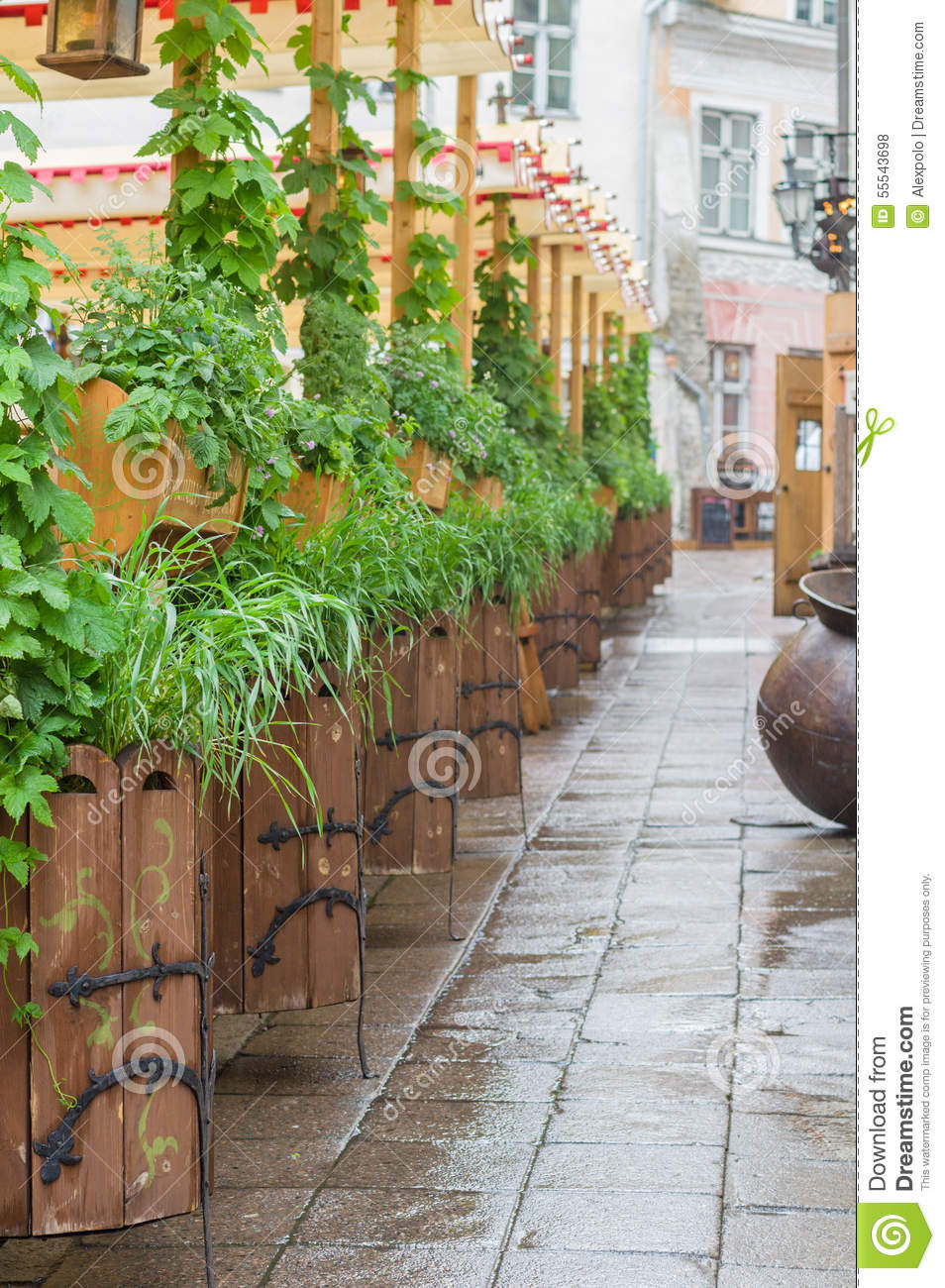 Scenic medieval style outdoor terrace with plants stock for Terrace plants