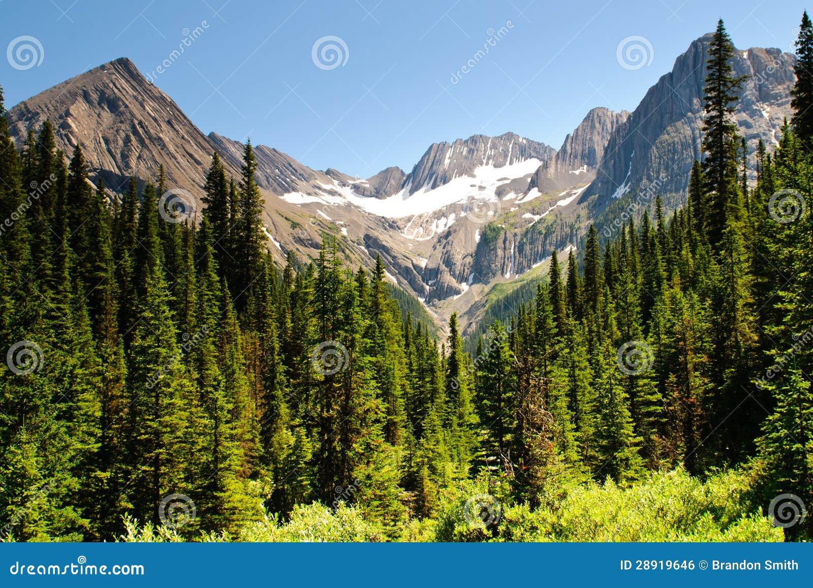 Scenic Mountain Views Kananaskis Country Alberta Canada Royalty Free ...