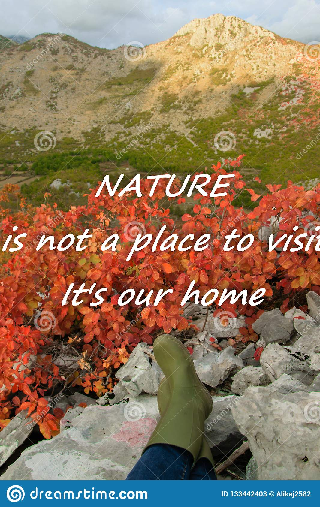 Scenic nature background with text