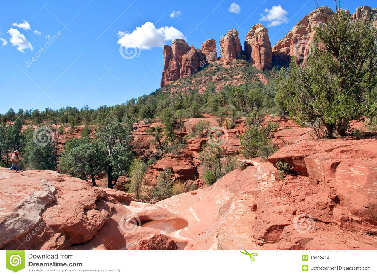 Scenic red stone landscape of sedona in arizona stock for Red stone landscape rock